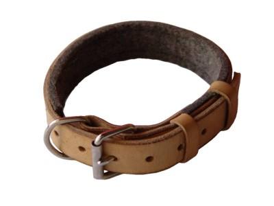 Brad Anderson's Dog Collar