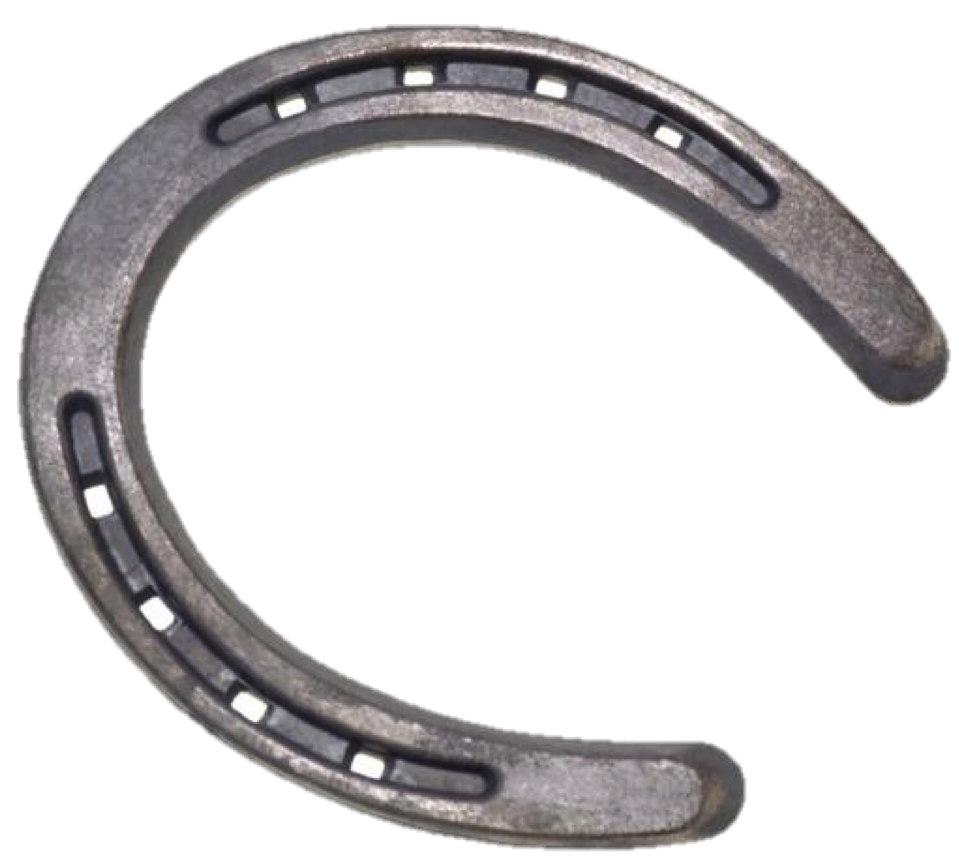 Secretariat's Horseshoes