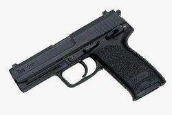 Malik Nettles' Gun .jpg