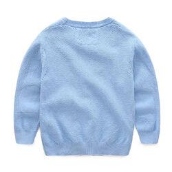 James Bulger's Sweater.jpg