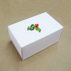 White-Gift-Box-for-Electronic-Products-BYZ-022-.jpg
