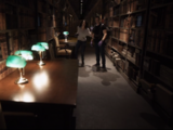 Harrison D. McFaddin's Emeralite Lamps