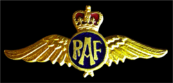 RAF pin.png