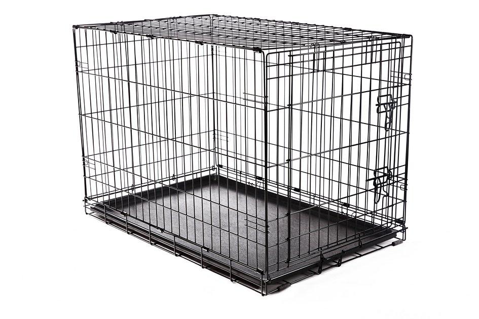 Nina Kulagina's Cage