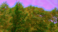 Replica Leary - Purple Haze 1