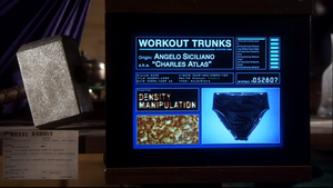 Charles Atlas Workout Trunks Screen - Larger.png