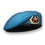 Shared beret.png