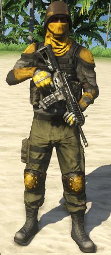 Privateer Defender.png