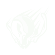 MACH RUSH icon