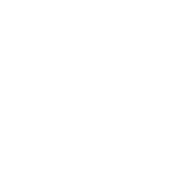 Banshee/Fähigkeiten