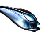 Orokin-Beschleuniger