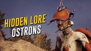 Hidden Lore Origins of the Ostrons (Warframe)