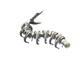 Section de Noyau Spinal