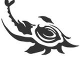 Yareli/Abilities