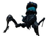 Kühlmittel-Arachnoide