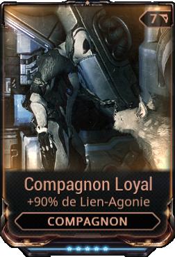 Compagnon Loyal