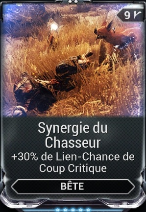 Synergie du Chasseur
