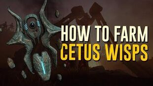 How to Farm Cetus Wisps! Plains of Eidolon (Warframe)