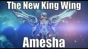 Warframe Amesha Review and Build