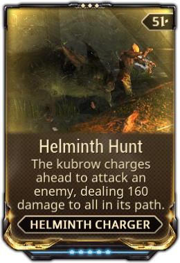 Helminth Hunt