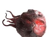 Dendrite Blastoma