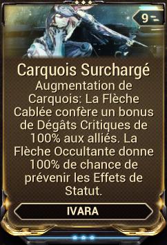 Carquois Surchargé
