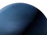 Neptune Proxima