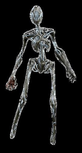 Squelettique