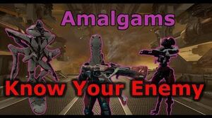 Warframe Amalgams (Know Your Enemy) - Spoiler Free