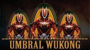 Warframe Builds - Umbra Powered Wukong