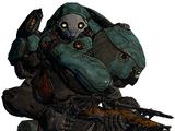 Elite Lancer