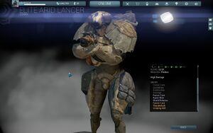 Elite Arid Lancer