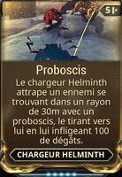 Proboscis
