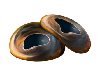 Olhos de Tralok