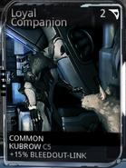 Unranked loyal companion