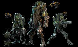 Le Trio Grustrag