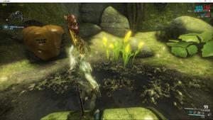 Sunlight Jadeleaf E-Prime