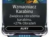 Wzmacniacz Karabinu