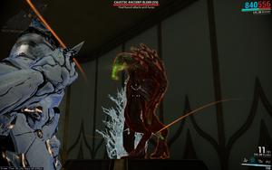 Caustic Ancient Elder 3