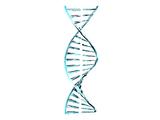 Kod Genetyczny Kavata