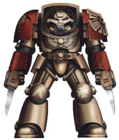 Terminator Veteran Sergeant