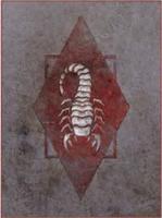 905th SA Cohort Ash Scorpions