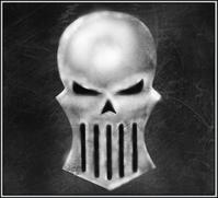 Silver Skulls Icon