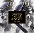 Grey Angel Cover.jpg