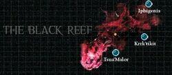 Black Reef.jpg