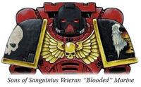 SoS Blooded Marine