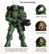 SalamandersInfiltrator