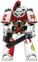 WS Maximus Armour