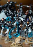 Frozen Stars Shadowseer Troupe of the Dark