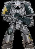 Silver Skulls Marine